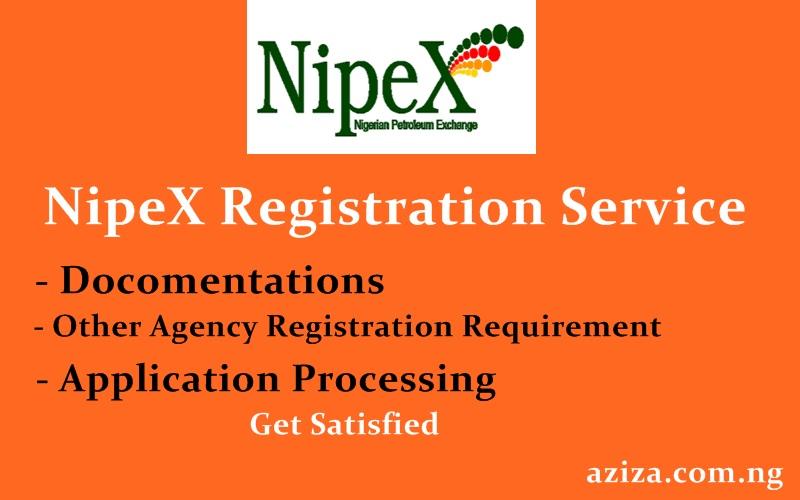 NipeX Registration Service