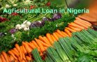 low-interest-agricultural-loan-in-Nigeria