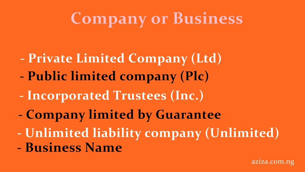 Business or Company Registration Service