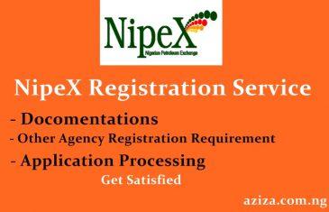 NipeX Registration Service or Agent