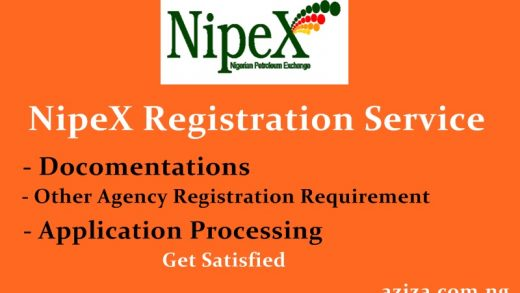 NipeX Registration Service or Agent