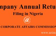How to file Company's Annual Return in Nigeria