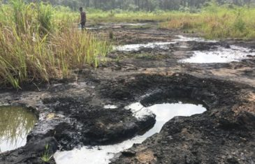 Environmental Remediation Nigeria
