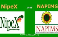 What is NipeX and NAPIMS?