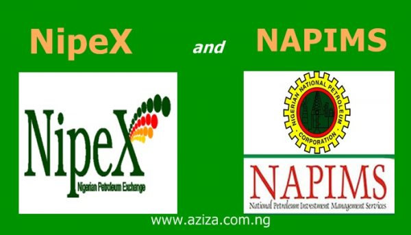 What is NipeX and NAPIMS