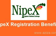 What is NipeX & Benefits of Registering with NipeX