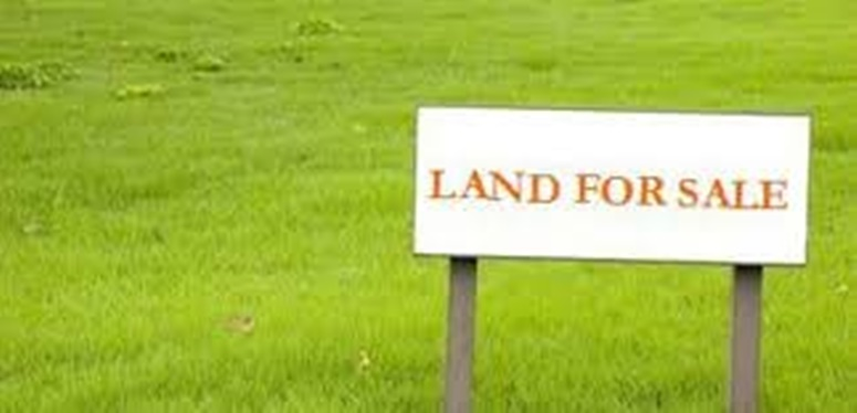 Properties for Sale (Lands with Properties)